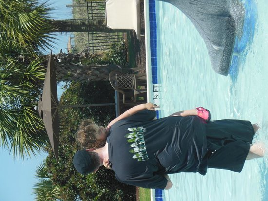 DoubleTree Resort by Hilton Myrtle Beach Oceanfront: one of the toddler pools