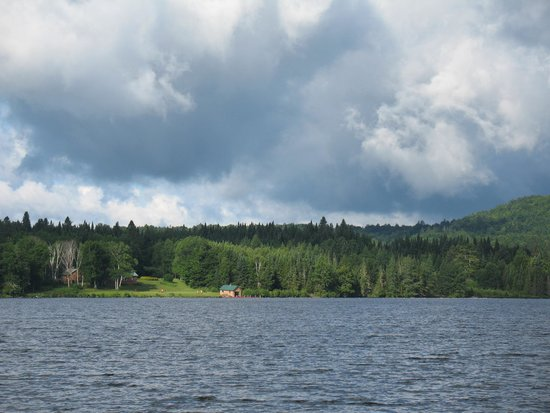 Tall Timber Lodge : View from cabin