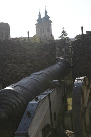 Eger Castle (Egri Var) : Cannon