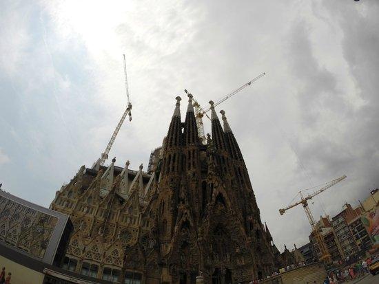 Sagrada Família : cranes in action