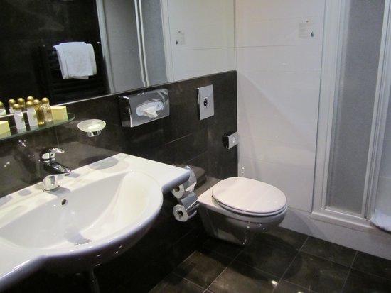 Hotel Majestic Plaza Prague: lavabo