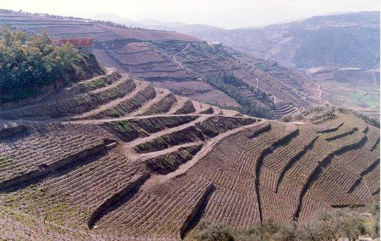 Vila Real District, Portugal: Cumieira (Socalcos)