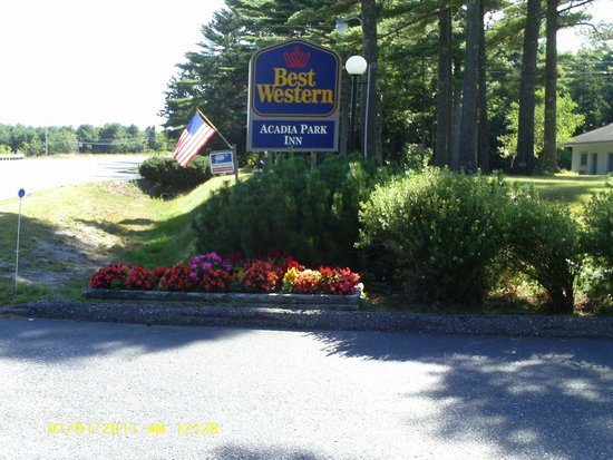 BEST WESTERN Acadia Park Inn: Our sign and flower bed