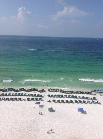 Sundestin Beach Resort : Every morning...