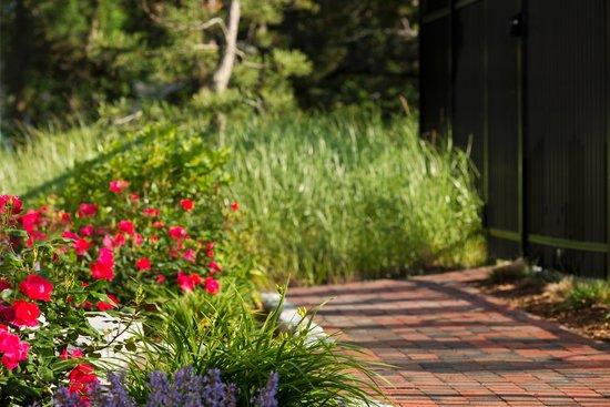 Wellfleet Motel : Gardens
