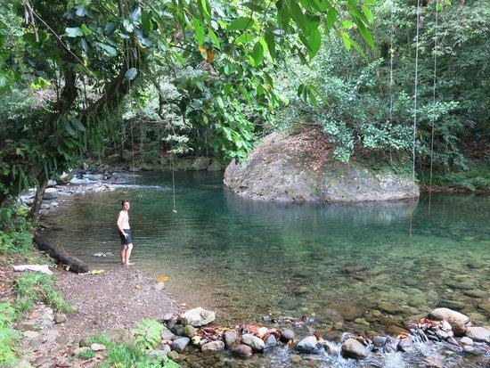 Mermaid's Secret - Riverside Retreat: Mermaid pool