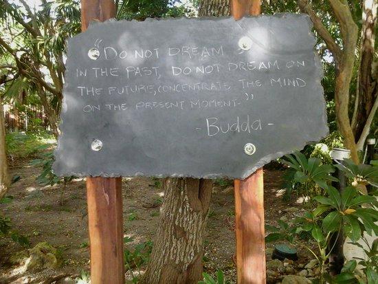 Dreams Tulum Resort & Spa: Signs along walks