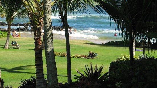 Lae Nani Resort Condos : View toward the beach.