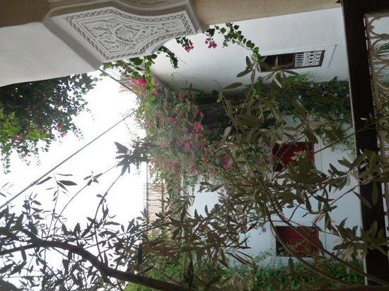 Riad Dar El Aila: Courtyard