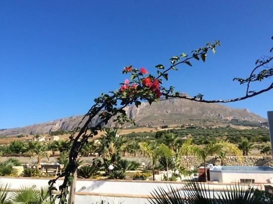 Villa delle Palme Delfina : vista su Erice....