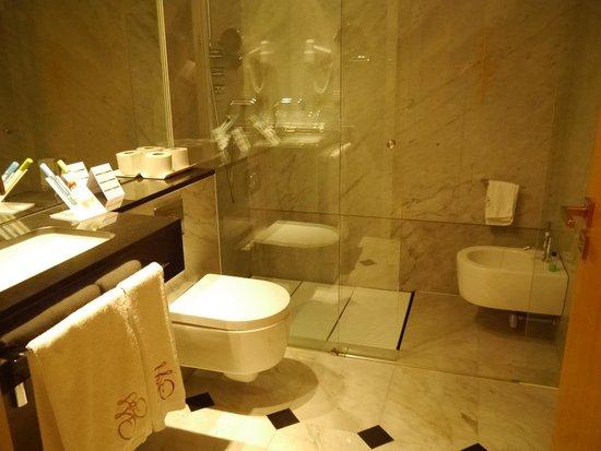 Hotel Torremilanos: La mampara de la ducha, muy buena.