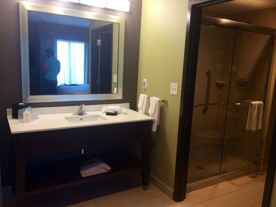 Hampton Inn & Suites Chattanooga/Hamilton Place : Bathroom