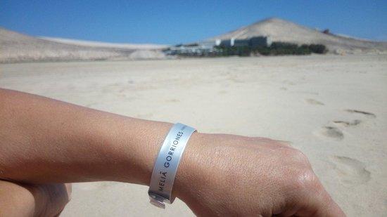 Melia Gorriones Fuerteventura: El hotel visto desde la playa