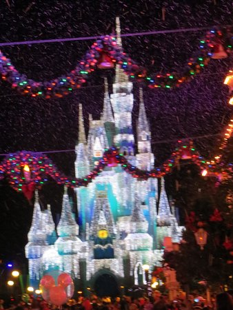 Disney's Caribbean Beach Resort : You'll get the see the Kingdom decorated for Christmas in November
