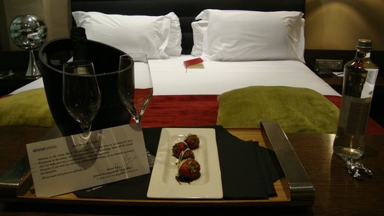 Hotel Olivia Plaza: Complimentary champagne and strawberries for our honeymoon!