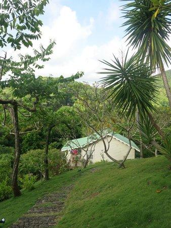 Beau Rive : Hotel garden