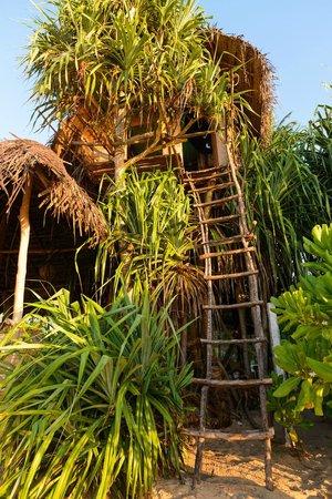 Cinnabar Resort: Treehouse - try it!