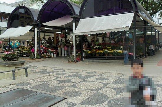 The Flowers Street : Rua das Flores