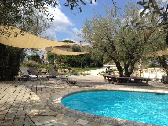 Maison d'Hôtes Bleu Azur : Farniente à la piscine