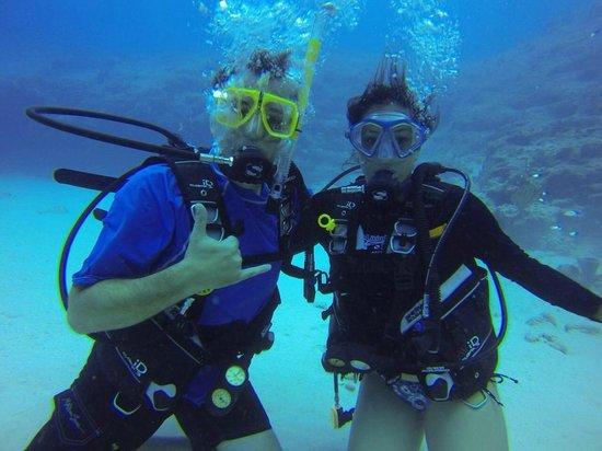Living The Dream Divers: LTD Divers