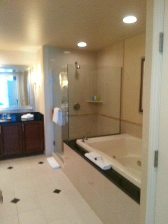 Signature at MGM Grand: Partial View of Bathroom