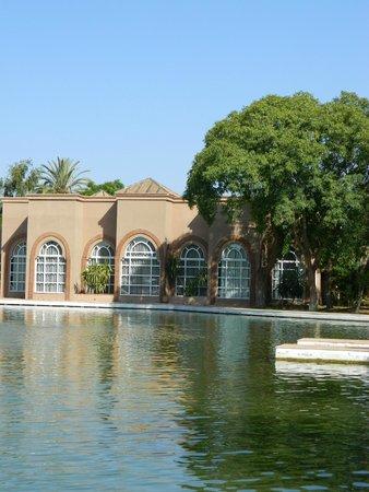 Pullman Marrakech Palmeraie Resort and Spa : le lac et le spa