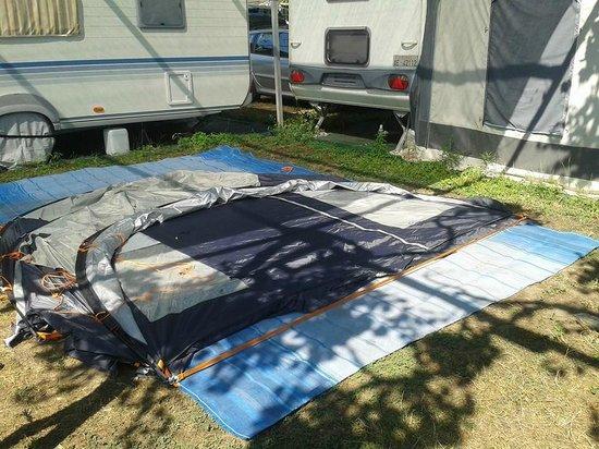 Camping Delfino: mezza piazzola