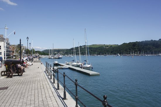 Dart Harbour: The river Dart