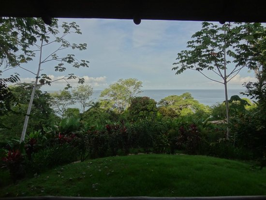 La Cusinga Eco Lodge: vu de la chambre