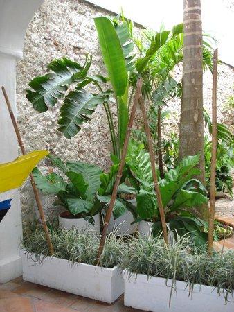 Bantu Hotel By Faranda Boutique: jardin