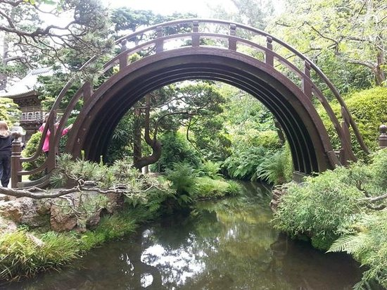 Japanese Tea Garden : Bridge (very popular with the kids) be careful climbing and coming down