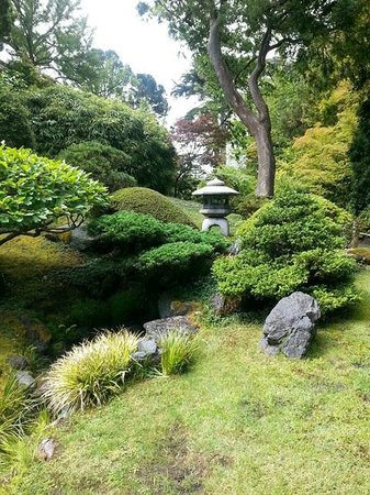 Japanese Tea Garden : Garden area