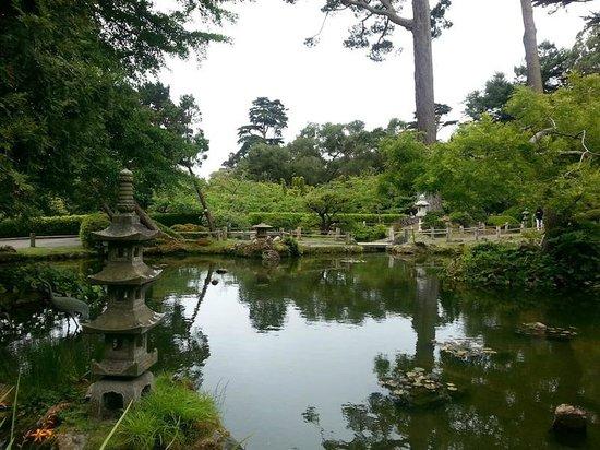 Japanese Tea Garden : Water in the garden