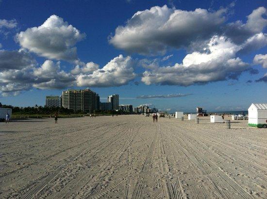 Hotel Ocean: spiaggia davanti all'hotel