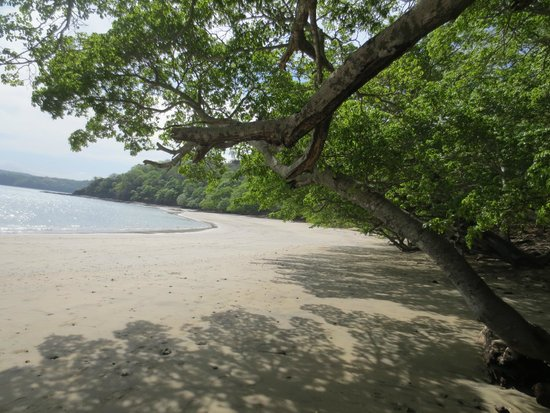 Occidental Papagayo - Adults only: Beach