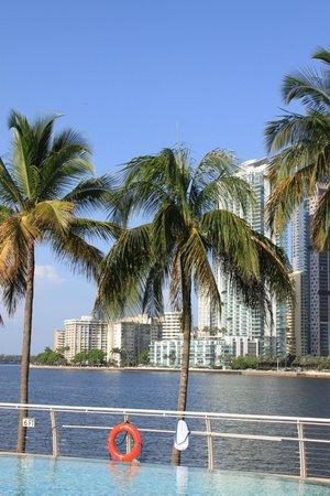 Mandarin Oriental, Miami : piscine