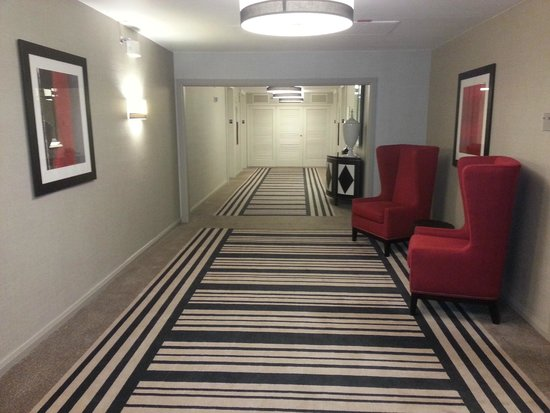 DoubleTree by Hilton Houston - Greenway Plaza : Floor 19 Hallway