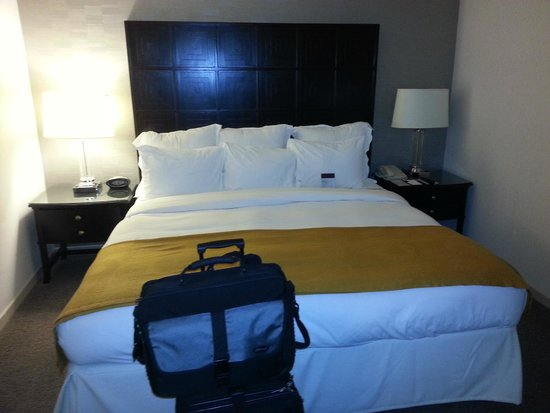 DoubleTree by Hilton Houston - Greenway Plaza: Room 1610