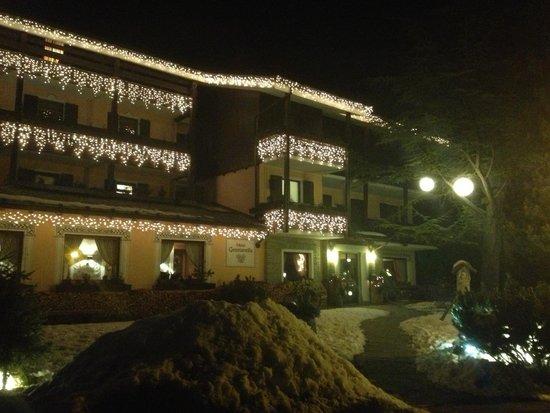 Hotel La Genzianella : Отель снаружи