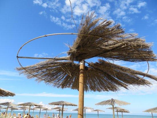 Hotel Club Resort Regina del Mare: OMBRELLONI CLIENTI SERIE B