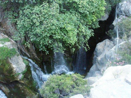 Ущелье - Picture of Kourtaliotiko Gorge, Plakias - TripAdvisor