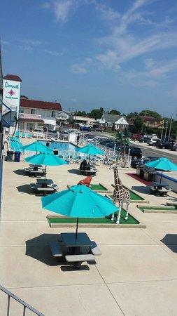 Compass Family Resort Motel : Golf course