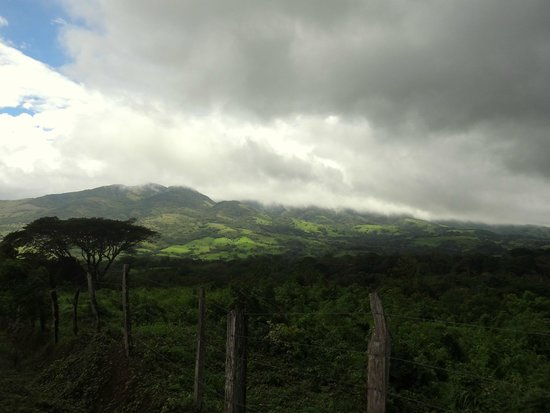 Tenorio Lodge: vue du domaine