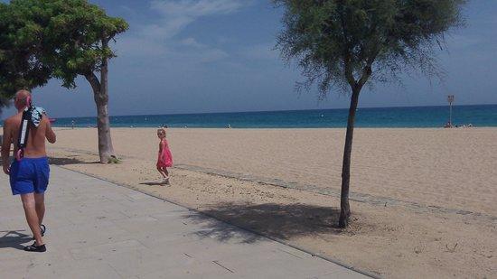 Aqua Hotel Bella Playa: Great walk along nearby beach