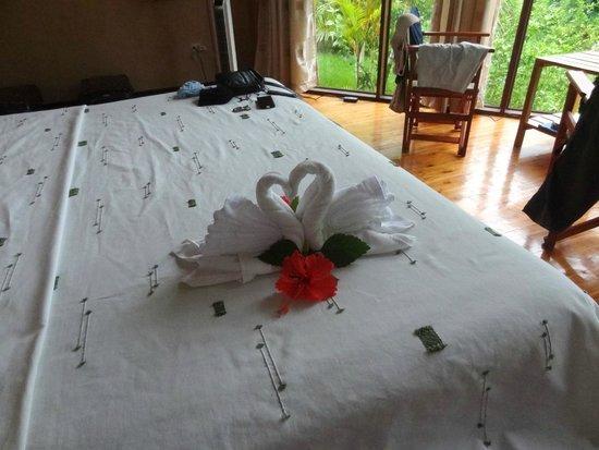 Tenorio Lodge: accueil