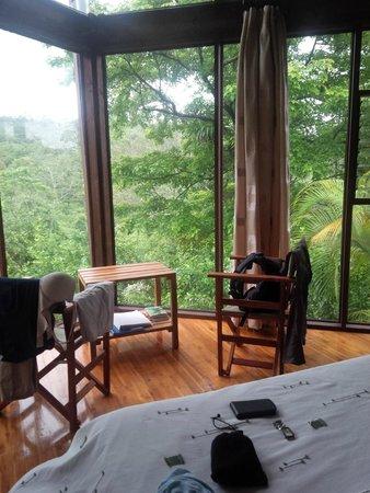 Tenorio Lodge: chambre