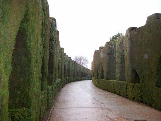 Granada a Pie : Jardines...