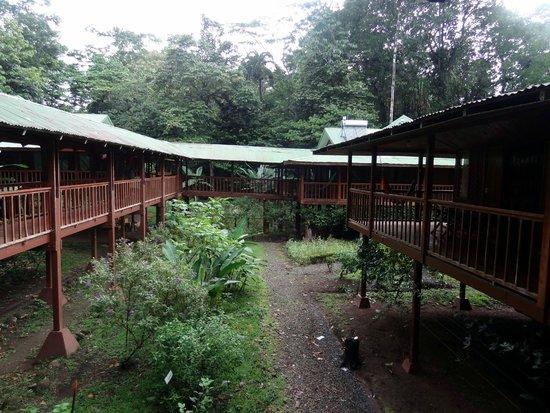 Selva Verde Lodge: couloir externe