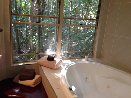 Narrows Escape Rainforest Retreat: View from the spa