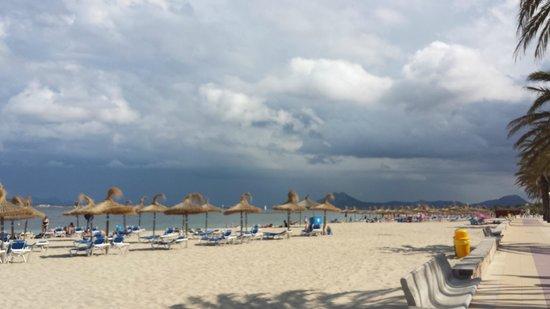 Puerto Azul Suite Hotel: The beach